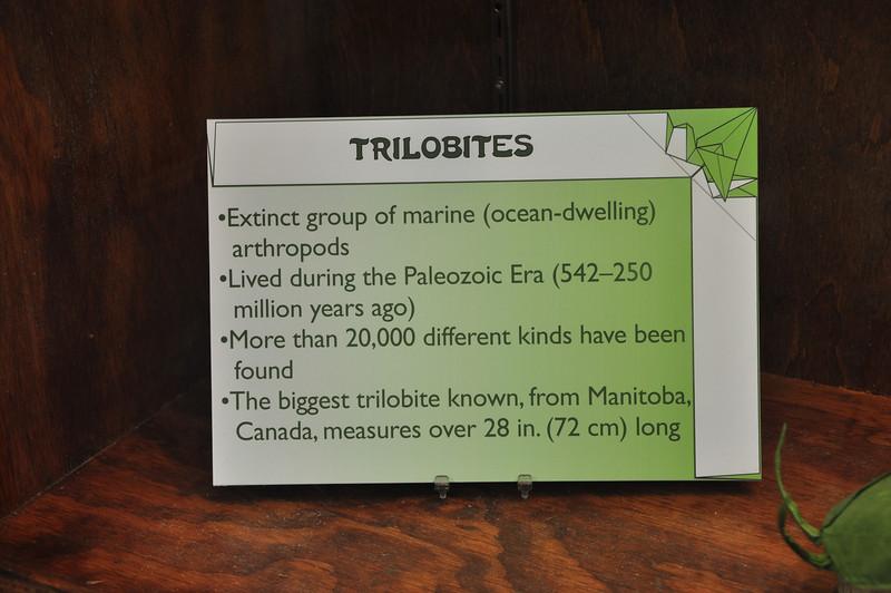 14b - Trilobites Sign