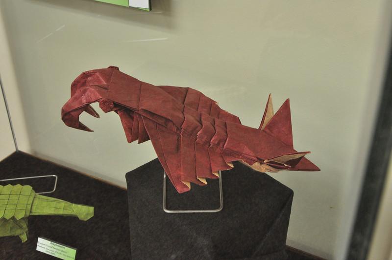 11b - Origami Anomalocaris 1