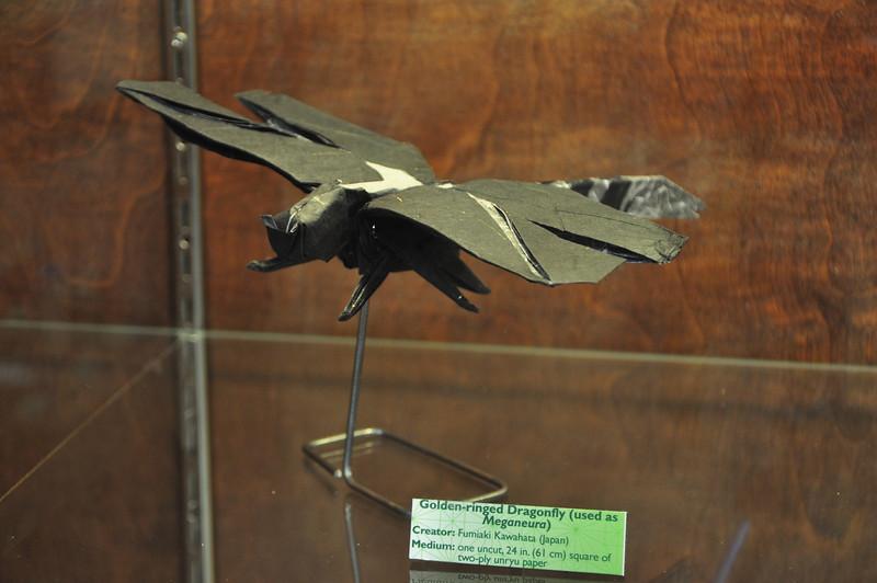 15a - Origami Meganeura 1