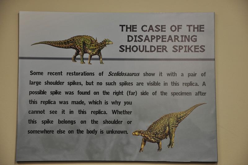 Shoulder spikes or no shoulder spikes?