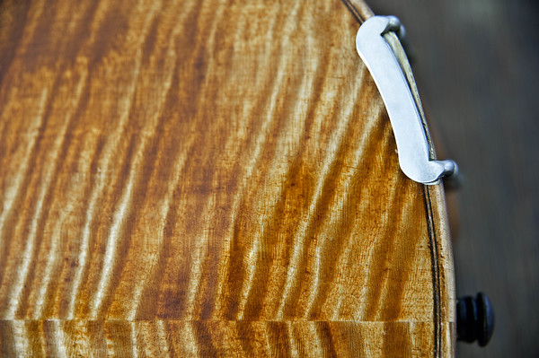 Close-up violin back seam, end pin and chin rest bracket on green background.  Violin maker unknown.  Mid-19th c