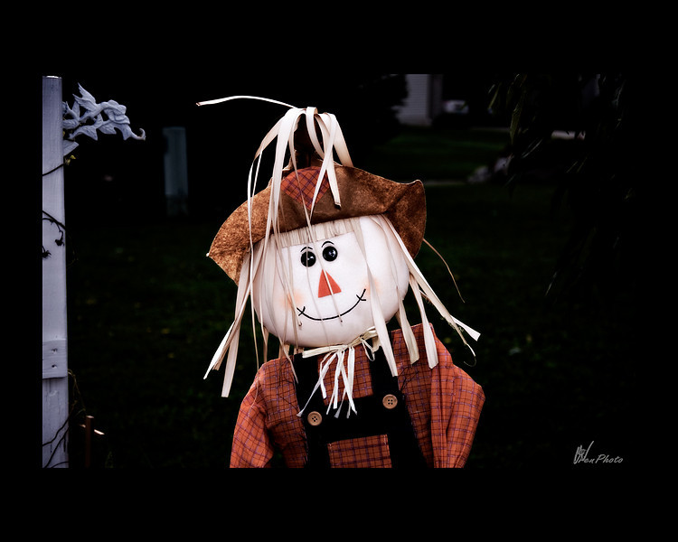 Day 141: Scarecrow