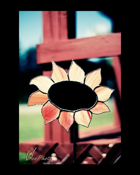 Day 07: Sunflower