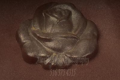 0265_ChocolateSunflower