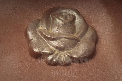0264_ChocolateSunflower