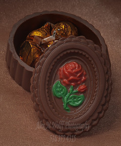 0274_ChocolateSunflower