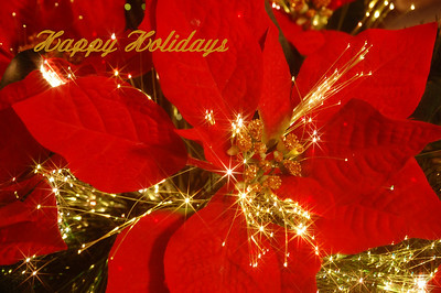 Happy Holidays to everyone! Hope you all have a very Merry Christmas.