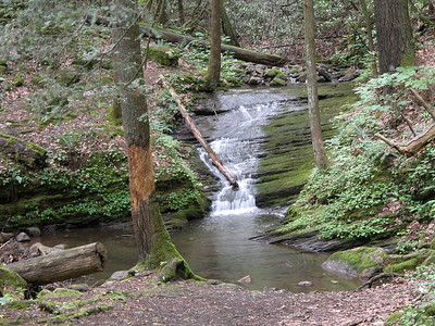 Waterfall on Flatwoods Road, Elizabethton, TN.