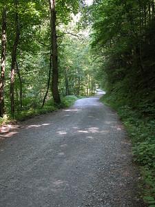 Little Stoney Creek Road below Watauga Lake Overlook