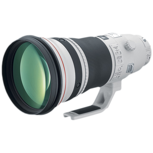 The 400mm/2.8 lens is my primary lens for wildlife photography.  Chose the 400mm over the 600mm due to the fact I shoot both mammals as well as birds.  When doing bird photography I can add the 1.4x extender (makes it 560mm).  The above lens is one of Canon's L-series with an Image Stabilizer. The focusing is lightening fast and images are tack sharp.  The only cons about this lens are the cost and weight (need a Sherpa to help you carry it afield). 