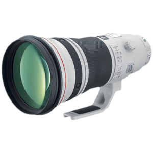 The 400mm/2.8 lens is my primary lens for wildlife photography.  Chose the 400mm over the 600mm due to the fact I shoot both mammals as well as birds.  When doing bird photography I can add the 1.4x extender (makes it 560mm).  The above lens is one of Canon's L-series with an Image Stabilizer. The focusing is lightening fast and images are tack sharp.  The only cons about this lens are the cost and weight (need a Sherpa to help you carry it afield).   Update: In 9/2011 I upgraded to the 400/2.8 version II.  This lens is approximately 4 pounds lighter.  Certainly easier to carry in the field and when traveling.  The new lens has been engineered for the ultimate in optical performance through the use of two fluorite lens elements for improved quality and reduced chromatic aberration.  The lens is certainly as sharp as the older version.