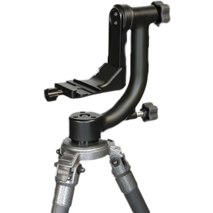 The Wimberley is a gimbal style device that incorporates an elevated tilt mechanism and an adjustable platform to perfectly align the center of gravity for a big telephoto lens. This gimbal device allows the lens to be balanced and move effortlessly. A Wimberley is almost a necessity when using telephotos with the weight of a 400 F2.8.  When using my 400mm F2.8 lens on the Wimberley it behaves as if it were almost weightless.  The only con about this head is the weight.