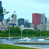 Chicago skyline from the acquarium<br /> One of my favorite pictures, Larry Trzaskus