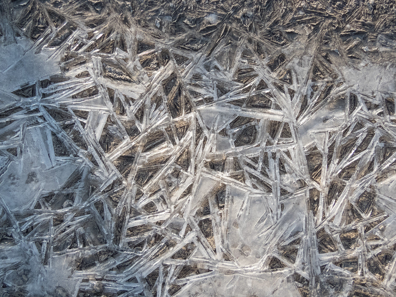 2-04-2017.  Weekly Walkers at Columbia Station.  For some reason, that park always has the best ice formations.  These were crystallizations on the paths.  Lots of them.