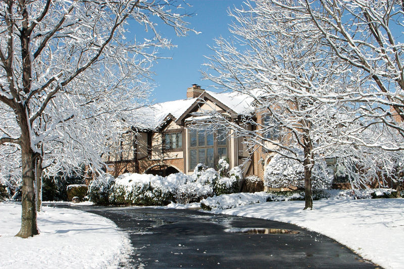 My parents' home in Oak Brook, IL. Obviously a very pretty winter.