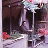 Christmas tree maker, Barcelona, 1972