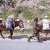 Greece, 1973