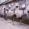Village in Portugal 1973