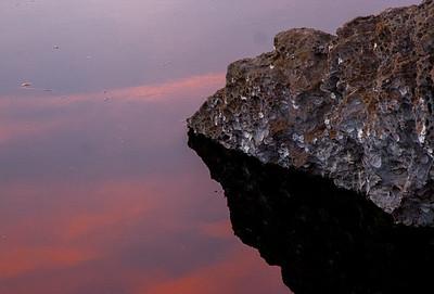 191_Sutro-LandsEnd_20121103