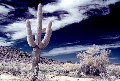 Desert Landscape  IR- 2020
