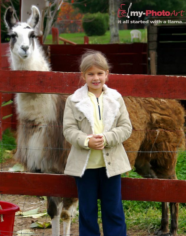 See Daddy...sometimes you just have to STOP and PET the llama!  -- Alix Pitner (7)