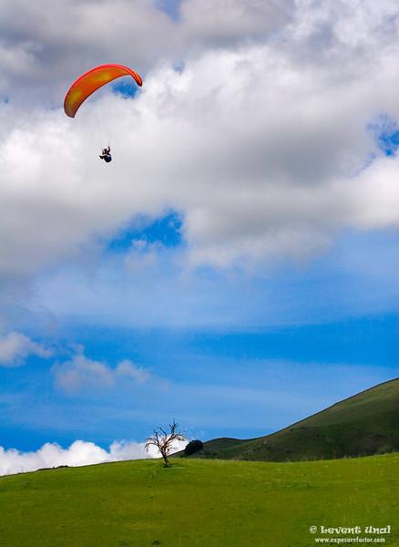 Paraglider_2