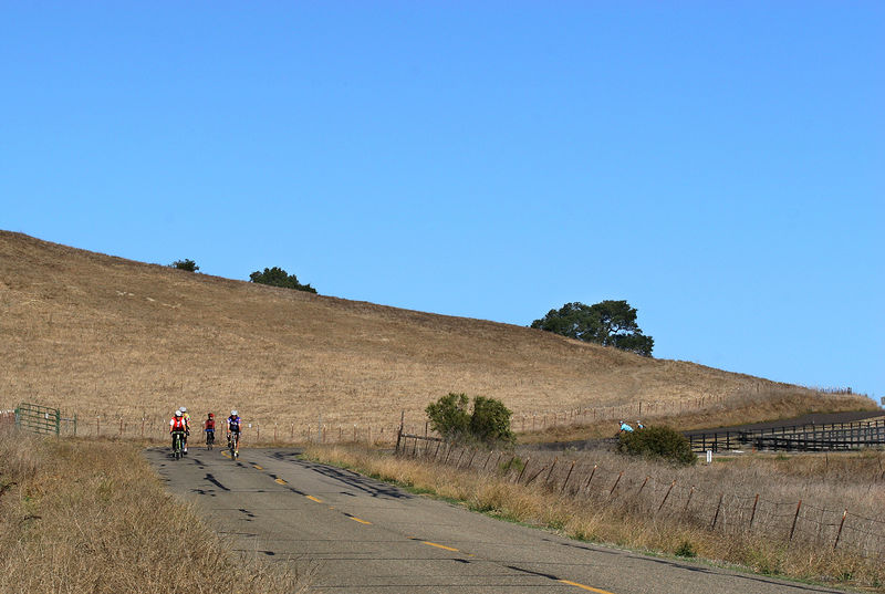 Cyclists on Happy Canyon Road