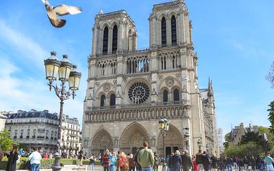 PARIS-9722