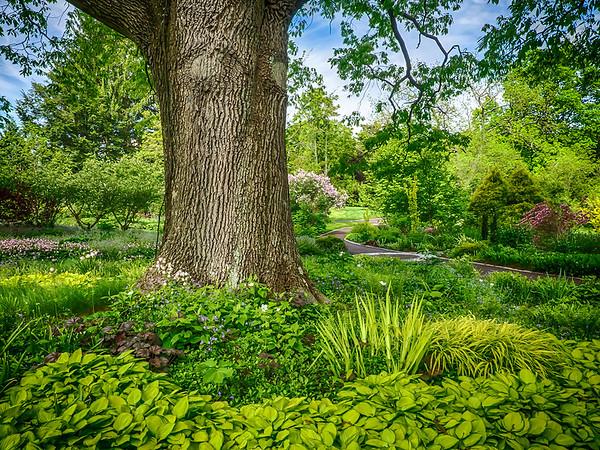 Chanticleer Gardens 2