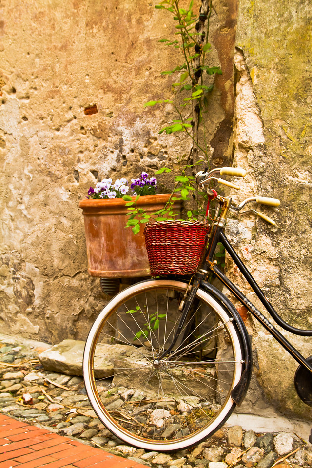 While visiting the picture perfect region of Loano, Liguria, I had a chance to visit one of the many castles in the area (most date to the 12th century). This bicycle and the early spring foliage caught my eye while I was hiking the narrow lanes that led to the castle in Borgio Verezzi