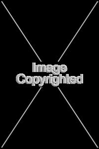 imagecopyright2
