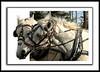 3d horse frame