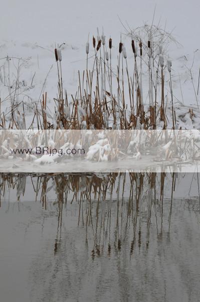 winter 09 pics_0023