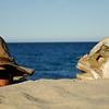 me Cabo Pulmo Marine Reserve, BCS, MX12/09