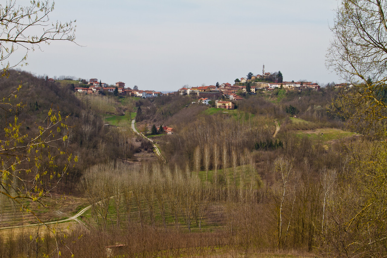 The view from the kitchen window at a friend's home in Rocca d'Arazzo, a tiny village just 10 minutes by car from the town of Asti, in Piemonte, Italy. The winegrowing region, best known for its quality Barbera, has more potential than it is realizing right now. More effort/money needs to be invested in the vineyards, but with the current economic slowdown, I don't see it happening anytime soon. Still, there are some producers actively making this investment and the resulting wines are some of the finest values in the world.
