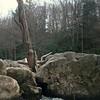 Wood in Mel's Toilet Bowl, Upper Yough, MD