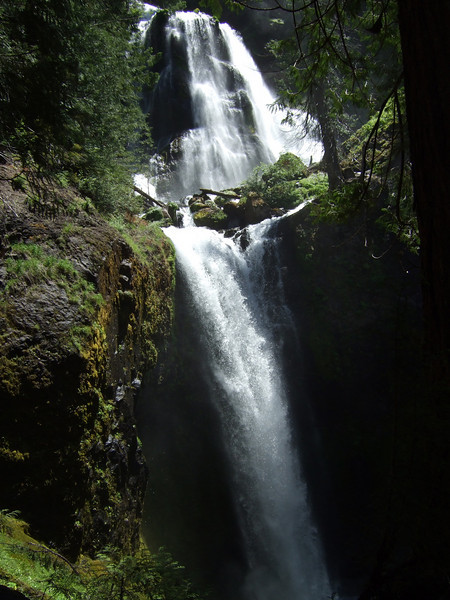 Falls Creek Falls, Gifford Pinchor National Forest, Washington, June 2009.