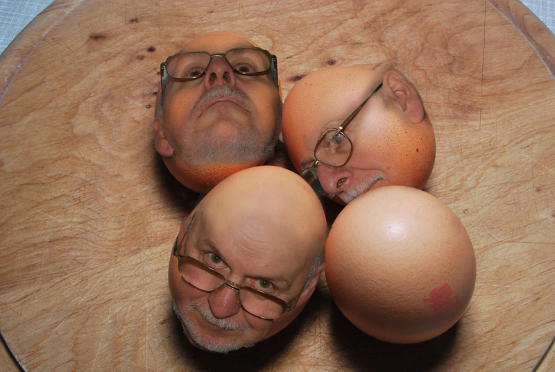 egghead3