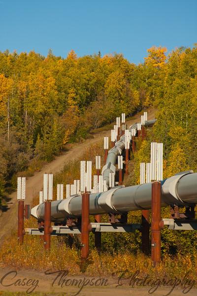 Dalton Highway Pipeline-7389