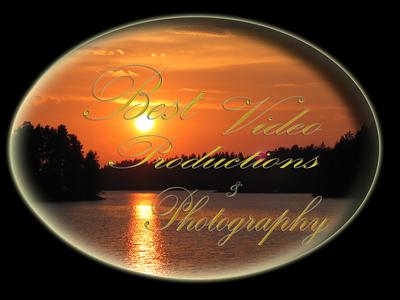 bvpp_logo