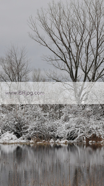 winter 09 pics_0085