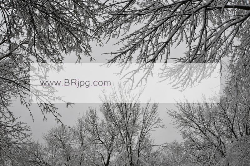 winter 09 pics_0032