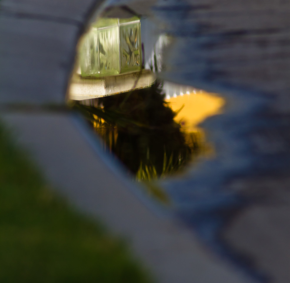 handheld, no IS or VR, taken while walking the dog in Huntington Beach, CA. A house and palm tree are upside down and reflected in a puddle. Not terribly interesting, but the camera's ability to grab the subject and blur the rest (handheld, no adjustments made) is pretty impressive, I think.