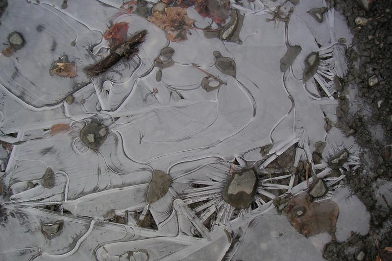 A frozen puddle...
