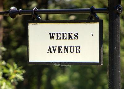 1_weeks aveDSC_3857