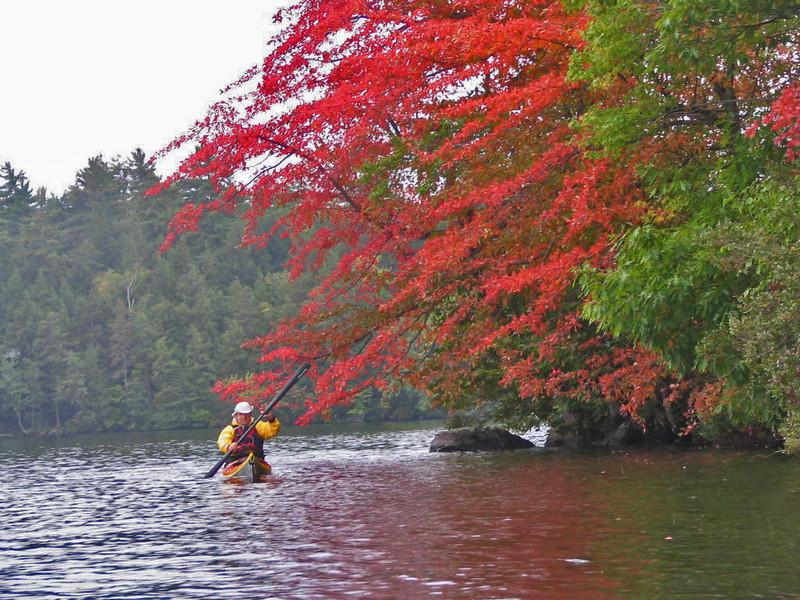 "Photo taken by Bill Harter ""Squam Lake"" Fall ""08"" of me"