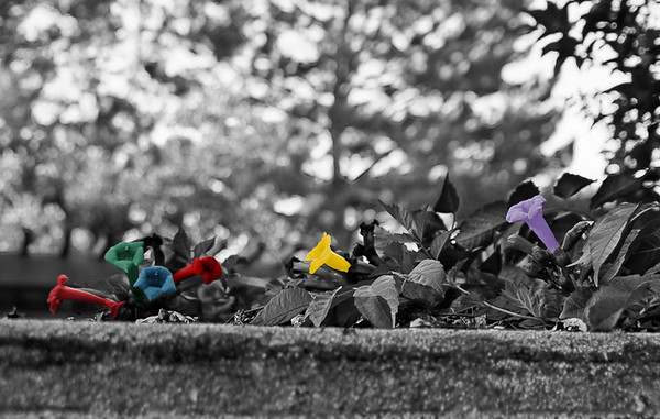 my first attempt at selective colouring, using GIMP. Saved as a tiny little .jpg, not meant for printing, etc.