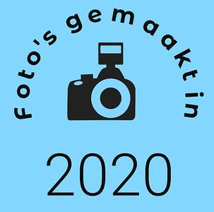 2020 logo-2