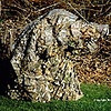 Your's truly in Ghillie suit and camera camo.