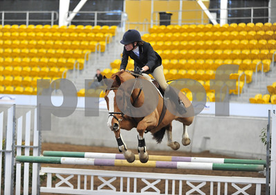 1-show jumping 097